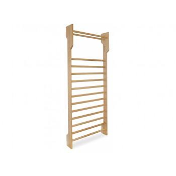 Gym ladder 250x90x10-22