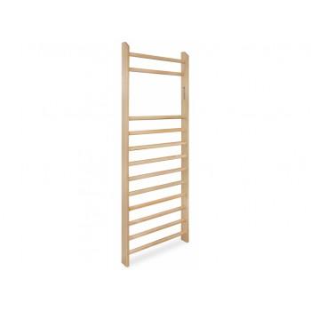 Gym ladder 90x250x10